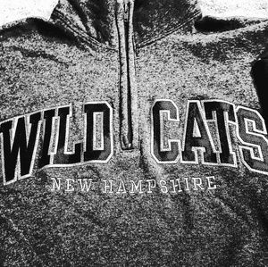 Champion hoodie sweatshirt